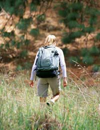 Hiking Walking Backpack Daypack
