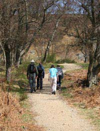 Walking Clubs & Groups